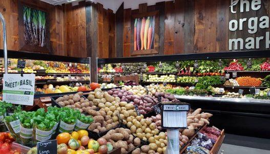 Terra Health & Wellness Market